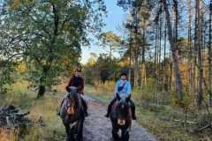 Outside ride Hartjeshoeve